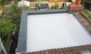flat roofs bath